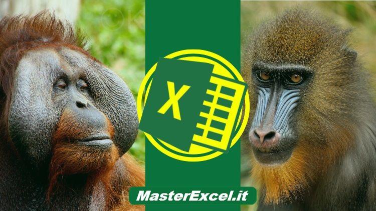 corsi-excel-online